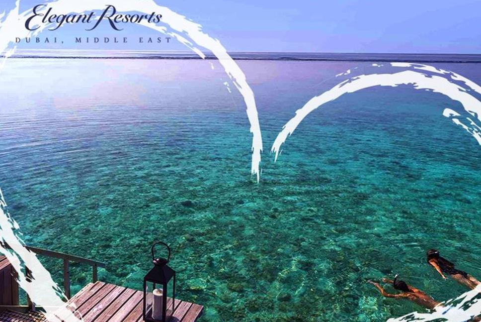 Elegant Resorts Case Study by Nexa Digital, UAE